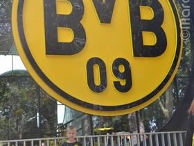 Sohnemann untern BVB Logo