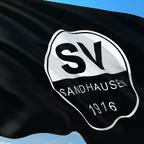 Sandhausen-Fussball